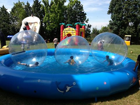 Noleggio gonfiabili sportivi piscina con zorball - Gonfiabili con piscina ...